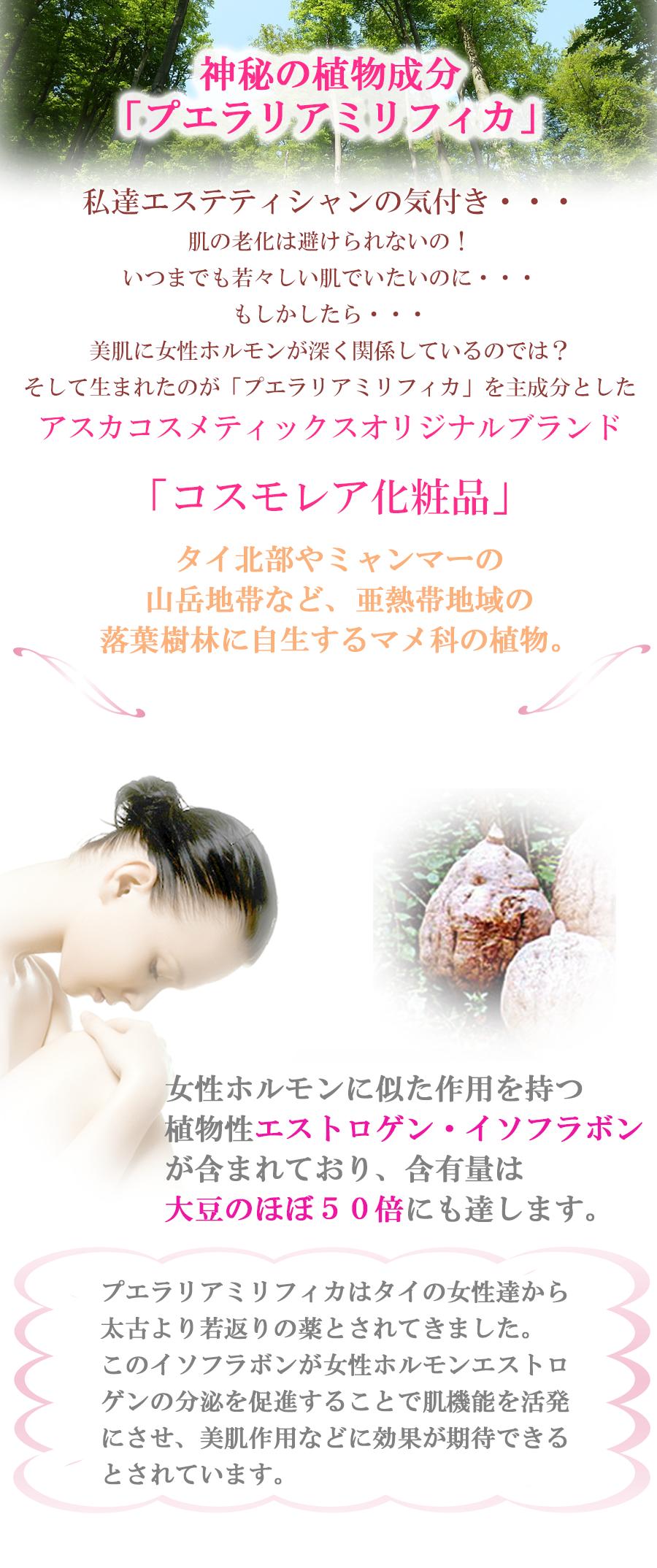 私達エステティシャンの気付き、肌の老化避けられないの、いつもでも若々しい肌でいたいのに、もしかしたら美肌に女性ホルモンが深く関係しているの。(アスカコスメティックス スキンケア 基礎化粧品 女性ホルモン)